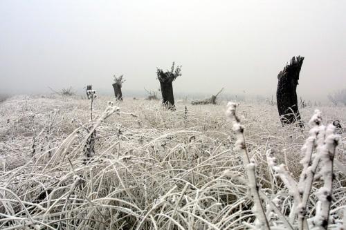 winter-1527041-1279x852